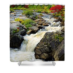 Hungary Trout Falls Shower Curtain
