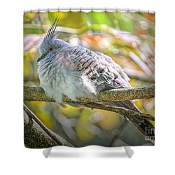 Hunkered Down Edition 2 Shower Curtain