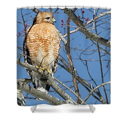Shower Curtain featuring the photograph Hunter Square by Bill Wakeley