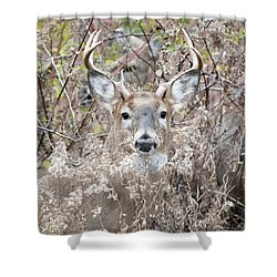 Hunters Dream Shower Curtain