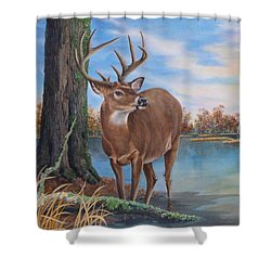 Hunters Dream Sold Shower Curtain
