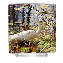 Hunting For Food Shower Curtain by Susanne Van Hulst