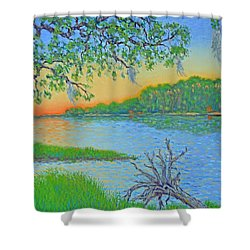 Shower Curtain featuring the painting Hunting Island Lagoon 2 by Dwain Ray
