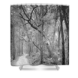 Hunting Island Path  Shower Curtain by Phill Doherty