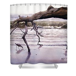 Hunting Island Sculpture Shower Curtain