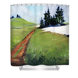 Shower Curtain featuring the painting Hurricane Hill by Nancy Merkle