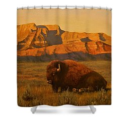 Hurry Sunup Shower Curtain