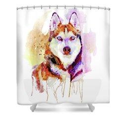 Husky Dog Watercolor Portrait Shower Curtain