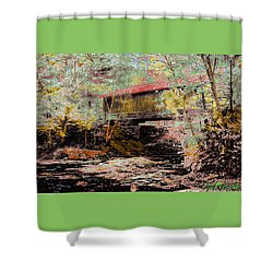 Hutchins' Bridge Shower Curtain by John Selmer Sr