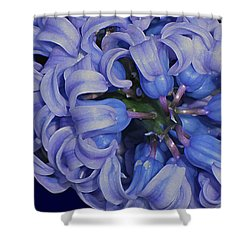 Hyacinth Curls Shower Curtain