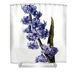 Hyacinth Shower Curtain by Granger