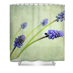 Hyacinth Grape Shower Curtain by Lyn Randle