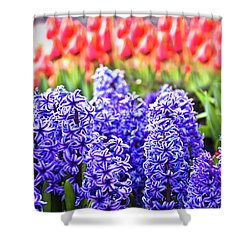 Hyacinth In Bloom Shower Curtain by Tamyra Ayles