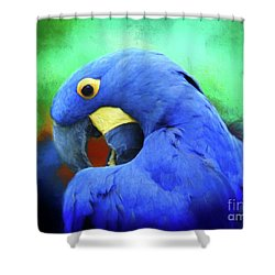 Hyacinth Mcaw Shower Curtain