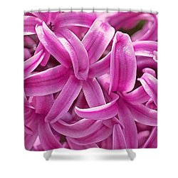 Hyacinth Pink Pearl Shower Curtain