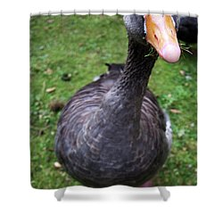 Hyde Park Goose Shower Curtain