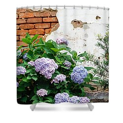 Hydrangea And Bricks Shower Curtain