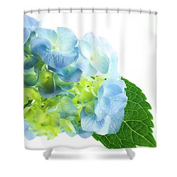 Hydrangea Magic Shower Curtain