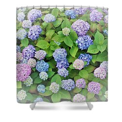 Hydrangea Play Shower Curtain