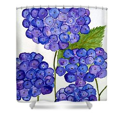 Shower Curtain featuring the painting Hydrangea by Reina Resto
