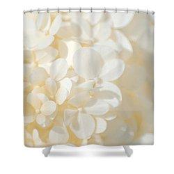 Hydrangea Shower Curtain by Tim Good
