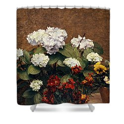 Hydrangeas And Wallflowers And Two Pots Of Pansies Shower Curtain by Henri Jean Fantin-Latour