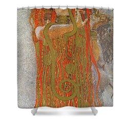 Hygieia Detail From Medicine Shower Curtain