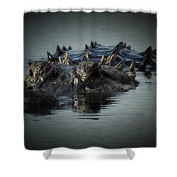 I Am Gator, No. 45 Shower Curtain