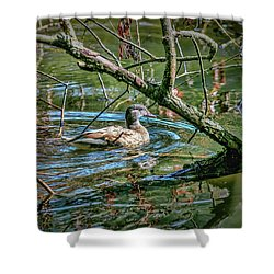 Shower Curtain featuring the photograph I Am Pritty #h9 by Leif Sohlman