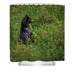 Shower Curtain featuring the photograph I Am So Handsome by Robert Bales