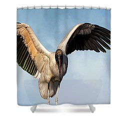 I Am The Great, And Powerful Oz Shower Curtain by Cyndy Doty