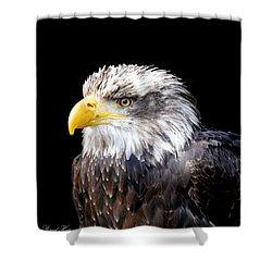 I Am The Law Shower Curtain by Bernd Hau