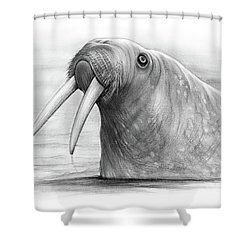 I Am The Walrus Shower Curtain