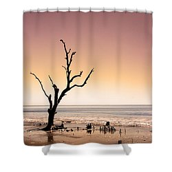 Shower Curtain featuring the photograph I Can Be Free by Dana DiPasquale