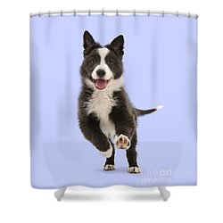 I Can Run All Day Shower Curtain