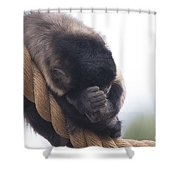 I Can Sleep Anywhere Shower Curtain by Anne Rodkin