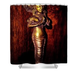 Shower Curtain featuring the photograph I Dream Of Genie by Al Bourassa