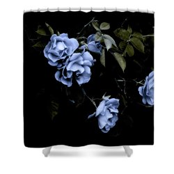 I Dream Of Roses Shower Curtain