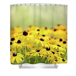 I Got Sunshine Shower Curtain by Beve Brown-Clark Photography