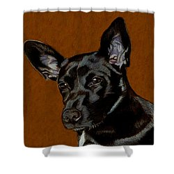 I Hear Ya - Dog Painting Shower Curtain by Patricia Barmatz