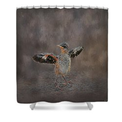 I Know I Can Fly Shower Curtain