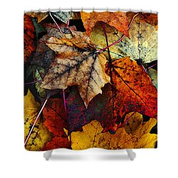 Shower Curtain featuring the photograph I Love Fall 2 by Joanne Coyle