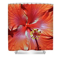I Love Orange Flowers 2 Shower Curtain