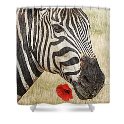 I Love Red Shower Curtain by Barbara Dudzinska