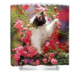 I Love Roses Shower Curtain