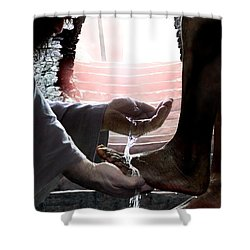 I Love You Shower Curtain by Bill Stephens