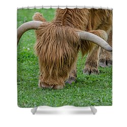 I Need A Haircut Shower Curtain by Michelle Meenawong