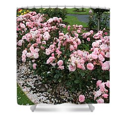 ...........i Never Promised You A Rose Garden Shower Curtain by Martina Fagan
