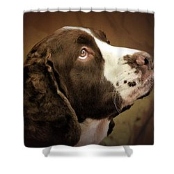 I Only Have Eyes For You Shower Curtain by Wallaroo Images