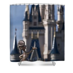 I Present You Cinderella's Castle Shower Curtain